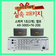 AR-300S+TK-200/매장용패키지,스피커 1조2개